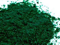 Chlorella powder is a green super food.